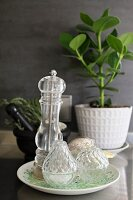 Salt cellar and pepper mill on plate in front of grey wall