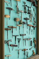 Collection of corkscrews on turquoise wall