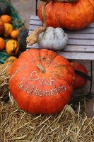 Various pumpkins on chair and bale of straw - motto written on one pumpkin