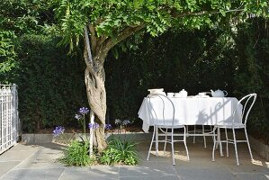 Tea service and white tablecloth on table on terrace in front of green hedge