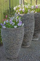 Spring flowers planted in large pebble planters on pebble cobbles