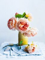 Salmon-pink roses in yellow vase