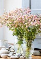 Glass vases of flowers amongst pebbles on floor