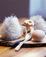 Boiled eggs with egg cosies on rustic wooden board