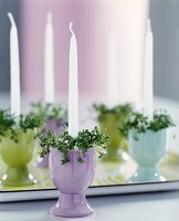 White candles stood in pastel egg cups decorated with cress