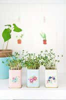 Cress growing in pastel tins painted with romantic floral designs