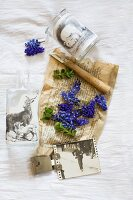 Still-life arrangement of grape hyacinths on yellowed paper and glass jar covered with animal motifs