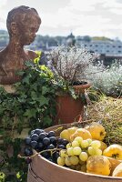 Autumn fruits in wooden bowl in front of stone bust and ivy on balcony balustrade