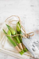 Tulips buds and leaves wrapped in tape on napkin