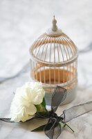 Weisse Nelke mit schwarzem Schleifenband und Deko-Käfig auf Marmorplatte