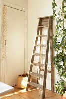 Rustic wooden ladder leaning against wall next to houseplant