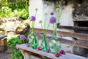Alliums in glass bottles and red onions on rustic wooden benches