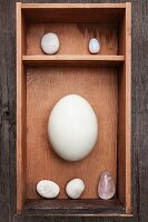 Pebbles, crystal and egg in wooden box