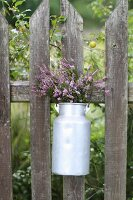 Flowers in old enamel milk churn on garden fence
