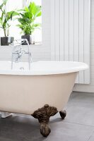 Vintage clawfoot bath in front of houseplants