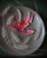 Red autumn leaf and grey grasses on plate