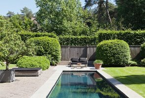 Pool in well-tended summer garden