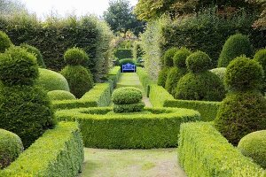 Blue bench at end of path leading through classic topiary garden