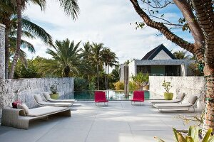 Modern loungers on terrace with pool amongst palm trees in background