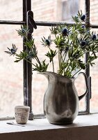 Blue eryngiums in pewter jug used as vase on sill of industrial window