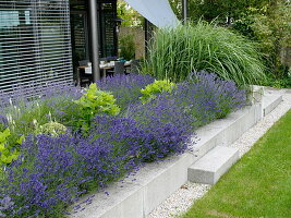 Terrace bed with concrete edging