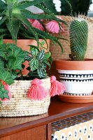 Cactus in painted pot and ivy in basketwork planter decorated with pink tassels