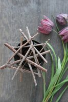Flower stand made from twigs and wire on pot and snake's head fritillaries