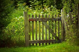 Weathered wooden garden gate and green lawn
