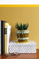 Aloe vera in retro pot against mustard-yellow wall