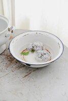 Pale blue hydrangea florets in old enamel bowl with rusty spots