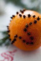 Cloves decorated orange