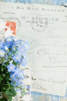 Forget-me-nots in front of old letter written in French