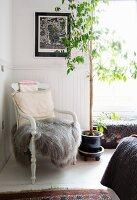 Alter Stuhl mit grauem Fell und Kissen neben einem Bäumchen