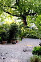 Potted plants and set of boules in summery gravel courtyard