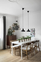 Row of plants on dining table with retro chairs