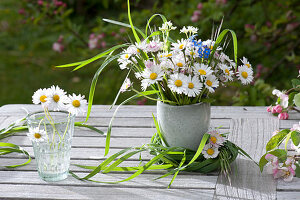 Small meadow bouquet with Bellis perennis, grasses