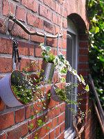 Bepflanzte Küchenutensilien hängen an einem Ast an der Hauswand