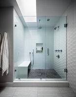 Walk-in shower with skylight and glass door