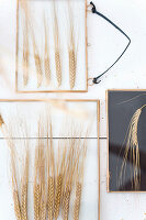 Wall decorations made from dried ears of wheat