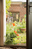 View through open door into summery courtyard garden