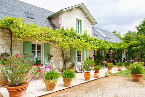 French, stone country house with large terrace