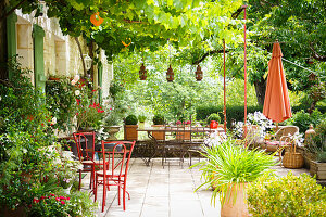 Seating on lushly planted terrace in summer