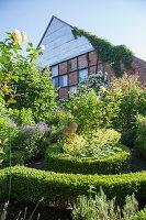Blühende Rosen und Buchsbaum-Einfassungen im Garten, im Hintergrund altes Backsteinhaus