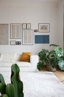 White leather couch and houseplant below old, framed sketches on wall