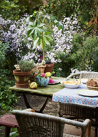Simply set table in mature, natural-style garden