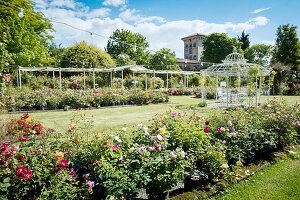 Gartenanlage mit Rosen und romantischem Pavillon