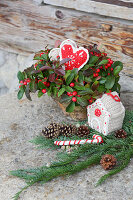Weihnachtlich geschmückte Scheinbeere im Topf