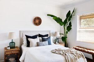 Bananenpflanze neben dem Bett im Schlafzimmer mit Tropenfeeling