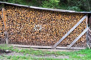 Stacked and covered firewood