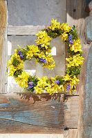 Heart-shaped spring wreath of forsythia and hyacinth florets